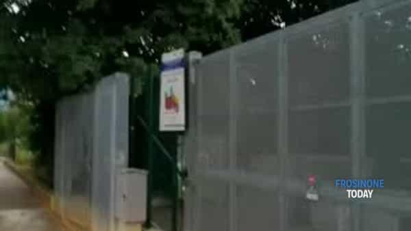 VIDEO | Corso Lazio e Giardino dei 5 sensi invasi dalle erbacce. Ferrara raccoglie la denuncia dei cittadini
