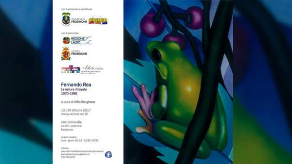 """Frosinone, mostra di Fernando Rea """"la natura ritrovata"""""""