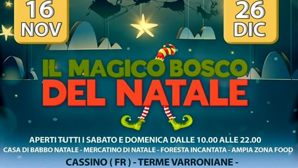 Cassino, il magico bosco del Natale