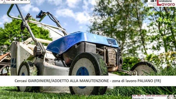 Paliano, offerta di lavoro come giardiniere/addetto alla manutenzione