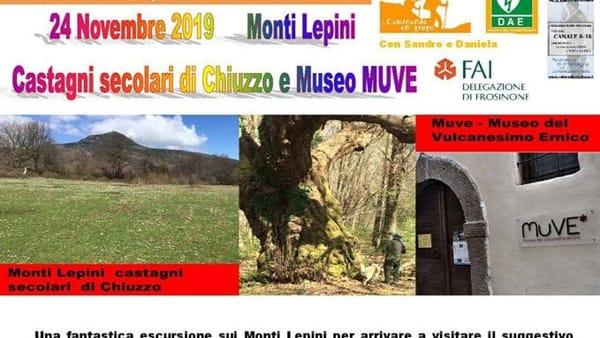Monti Lepini: castagni secolari di Chiuzzo e museo Muve